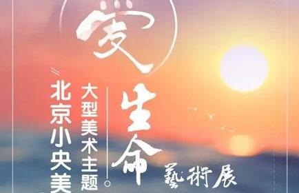 2017北京小央美大型主题